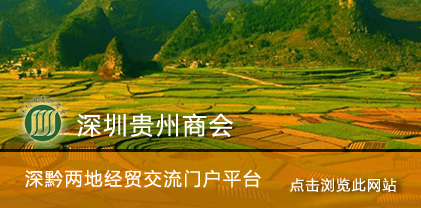 营销型网站案例:深圳贵州商会